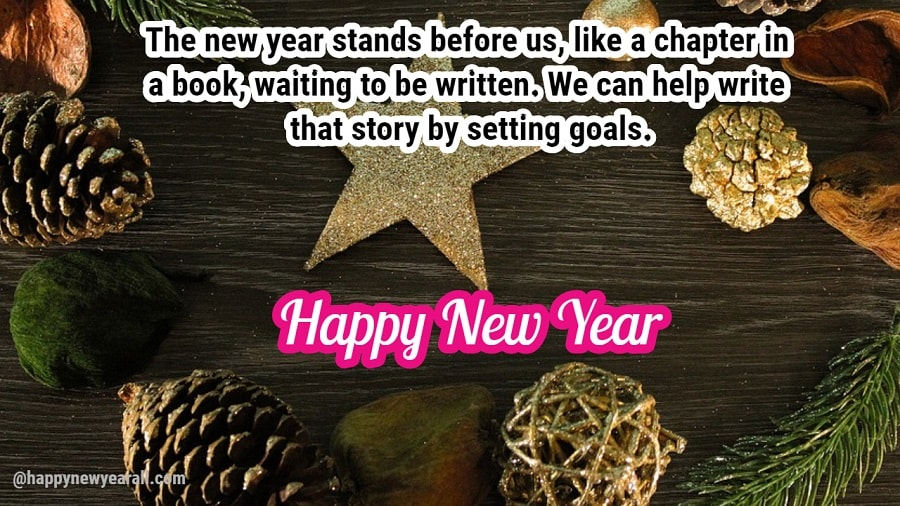 Funny new year Quotes and images
