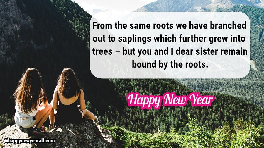 Happy New Year Message for Sister