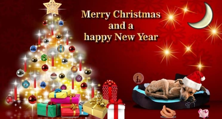 merry cristmas and happy new year wishes